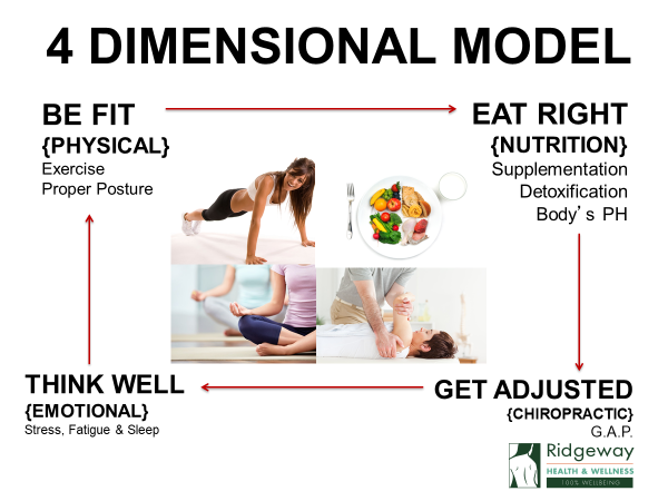 Health and Wellness 4 Dimensional Model
